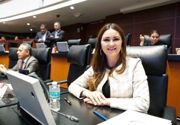 SOLICITA GEOVANNA BAÑUELOS PLATAFORMA INTERACTIVA PARA CONOCER ESTRATEGIA CONTRA EL CORONAVIRUS