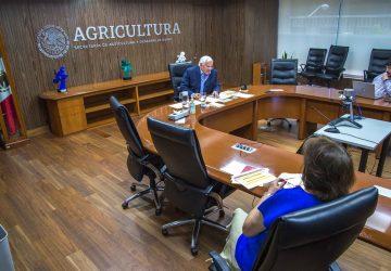 EVALÚAN AGRICULTURA, BID Y FAO REACTIVACIÓN DE SISTEMAS AGROALIMENTARIOS EN AMÉRICA ANTE LOS EFECTOS DEL COVID-19