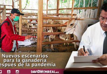 NUEVOS ESCENARIOS PARA LA GANADERÍA DESPUÉS DE LA PANDEMIA