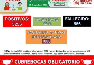 REGISTRA HOY ZACATECAS 33 NUEVOS CASOS DE COVID-19